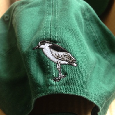 Ball cap, rear view